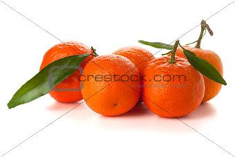 Five ripe tangerines