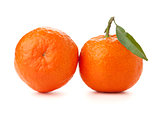 Two ripe tangerines