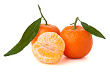 Ripe tangerines with green leaf