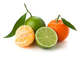 Limes and tangerines