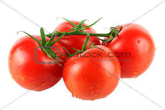 Four fresh tomatos