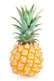 Sweet Mini Pineapple