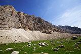 Rocks in sunny day
