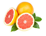 Fresh juicy grapefruits