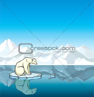 Polar bear and melting ice. Global warming.
