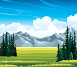 Summer landscape with fir, meadow and mountains.