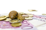 Snail sitting on Euro money