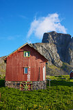 Norwegian shed