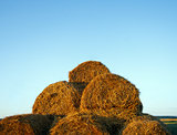 A haystacks on the field in August