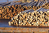 Lumber Mill Log Pile