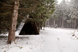 wooden hut in forest during snowfall