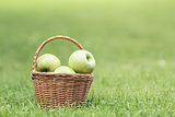 wicker basket full of green apples