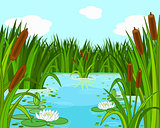 Pond scene
