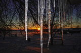 Icicles and Sunset
