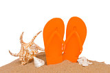 orange sandals and seashells in sand