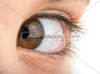 Human eye brown color