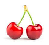Two Cherries white isolated