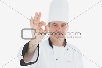 Portrait of chef showing ok sign