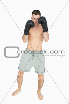 Portrait of shirtless young boxer in shorts