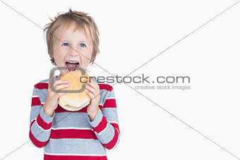 Cheerful young boy eating burger