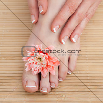 French nail treatment at spa center