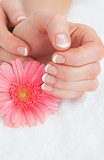 Flower with french manicured fingers