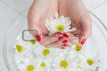 Close up of hands in bowl with flowers
