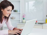 Side view of young woman using laptop