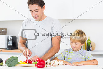 Son watching father preparing vegetables