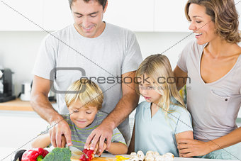 Mother and daughter watching father and son slicing vegetables