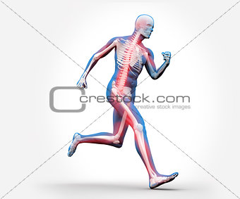 Blue and red digital skeleton running