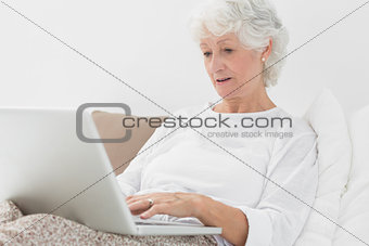 Old woman typing on her laptop