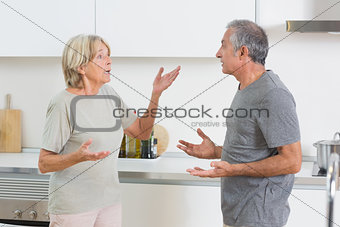 Wife quarrelling with her husband