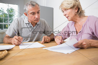 Couple discussing with documents