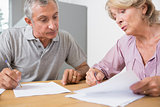Mature couple discussing with documents