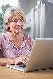 Mature woman using her laptop