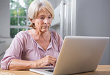 Calm woman using her laptop
