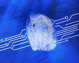 Fingerprint on digital blue background