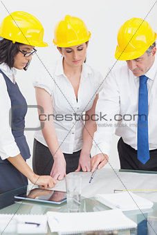 Architects looking at plan