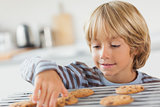 Boy taking a cookie