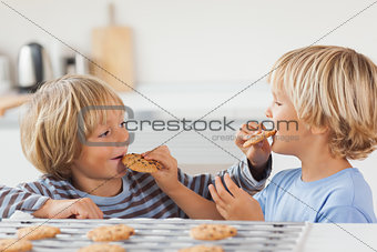 Brothers eating cookies together