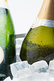 Two bottles of champagne chilling on ice