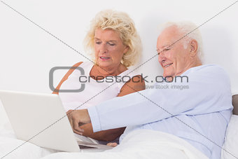 Aged couple using a laptop