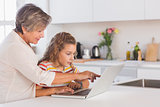 Grandmother and child looking at laptop