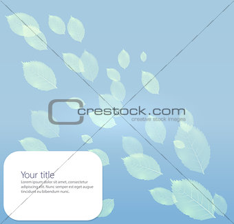 Background with transparents leaves