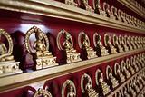Rows of buddhas