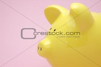 Close up of piggy bank