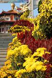 Decoration of chrysanthemums