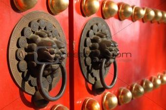 Close up of lion knob