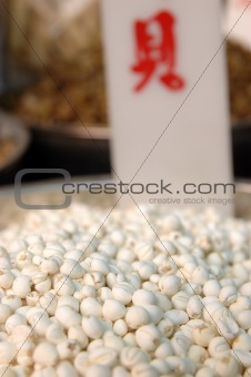 Tendril-leaved fritillary bulb
